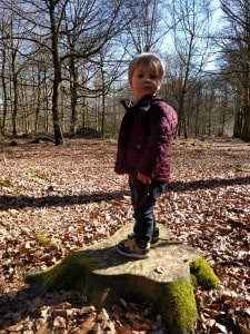 Fun exploring - Felbrigg Hall
