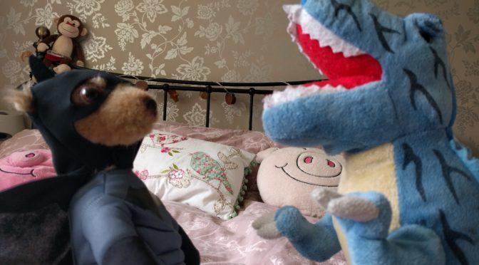 Meerkat Movies Fun