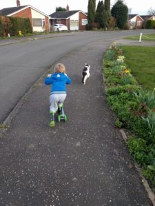 Going out with boy and cat