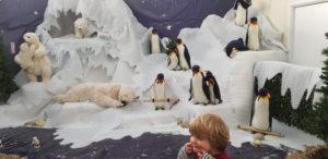 Penguins and a Polar Bear