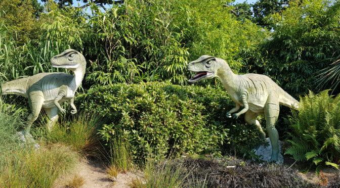 Predator High Ropes at Roarr! Dinosaur Adventure