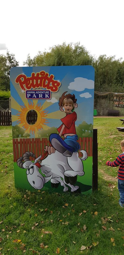 Pettitts Animal Adventure Park